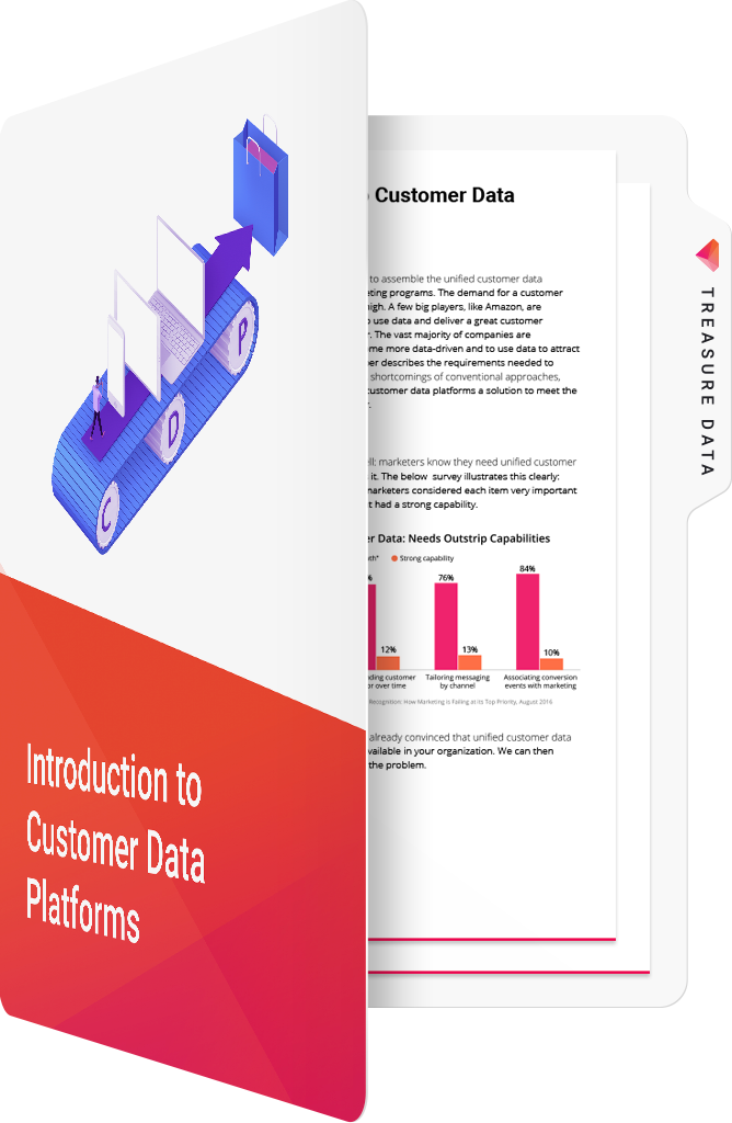 Introduction to Customer Data Platform
