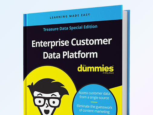 Enterprise Customer Data Platform Dummie Guide - Arm Treasure Data